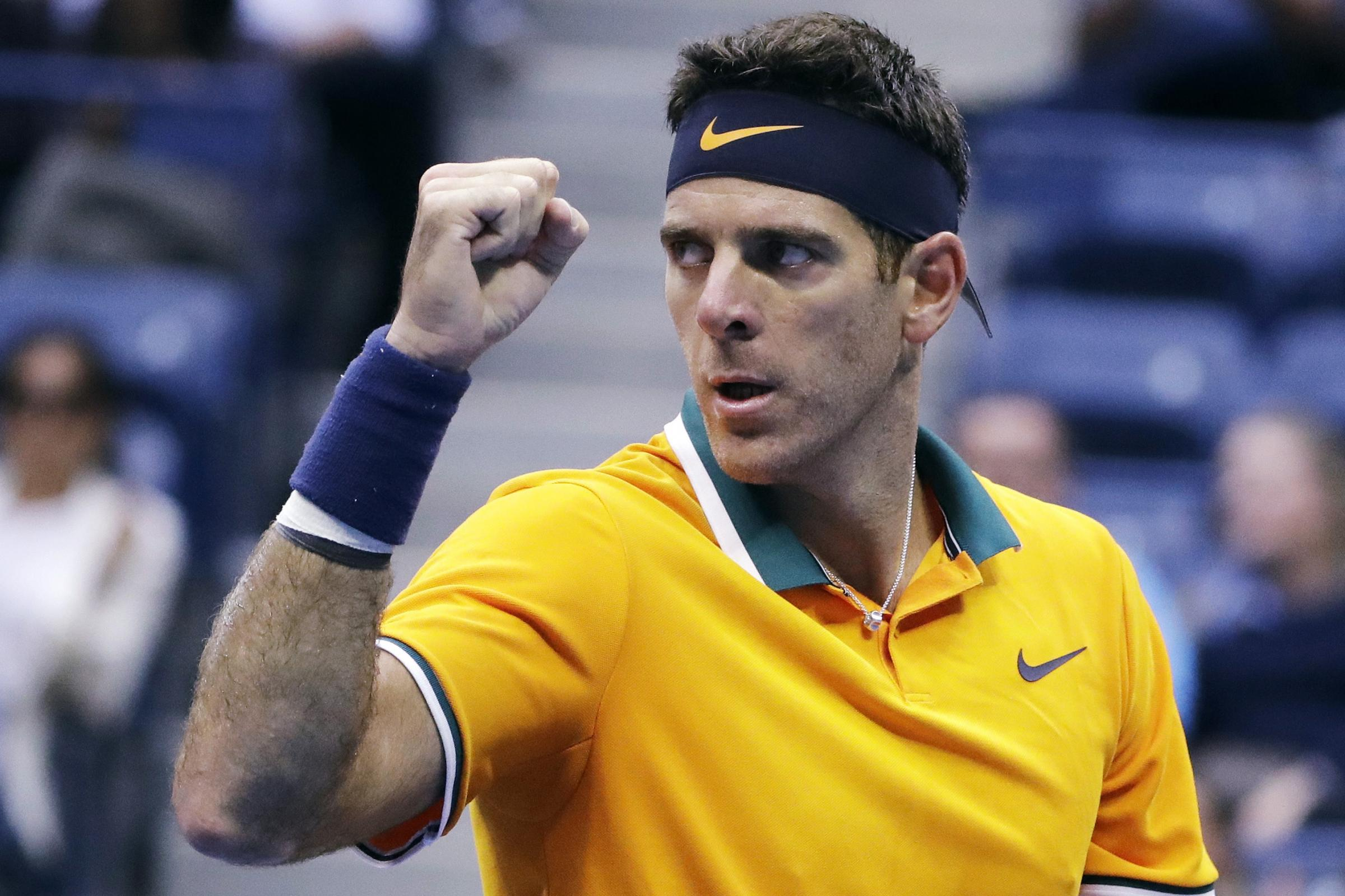 Juan Martin del Potro is bidding for a second grand slam title nine years after his first